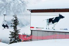 """In den Gebirgen kann man schon seit einiger Zeit eine weiße Schicht auf vielenGipfeln beobachten. Das heißt, es dauert nicht mehr lang und dannsinddieWintersportler zur Stelle. Winterlich geht es auch bei der Milch von Swissmilk zu. Das """"weiße Gold der"""