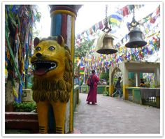 Temple on Observatory Hill, Darjeeling, India Darjeeling, Temple, Im Back, Bhutan, India Travel, India, Darjeeling Tea, Temples