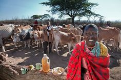 All You Can Eat: A Round-the-World Photo Tour of People, their Food, and their Calories per Day  maasai-diet