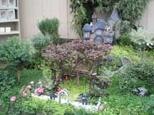 how to fairy gardens (from Tagawa Gardens)
