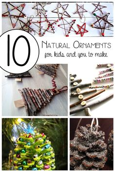 10 Natural Ornaments for the Kids and you to make