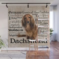 Buy Heart Wiener Dachshund Christmas Wall Mural by allthingstore. Worldwide shipping available at Society6.com. Just one of millions of high quality products available.