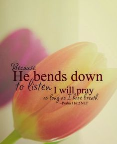 god hears our prayers Biblical Quotes, Religious Quotes, Bible Verses Quotes, Bible Scriptures, Faith Quotes, Bible Psalms, Psalm 116, Prayer Verses, Jesus Is Lord