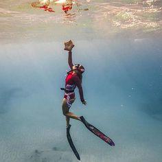 Reach for the Freediver @mermaid_brings_roses @digital.depths #freediving #onebreath #apnea #seas #oceans #deeperbluephoto #freediver #underwater #saltlife #reachforthestars #beautiful #explore #underwaterphotography #picoftheday http://ift.tt/2FWXvvv