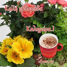 Αποκλειστικές Εικόνες Τοπ για Καλή Εβδομάδα.! - eikones top Mornings, Bebe, Acre