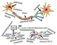 intel neuromorphic chip design - Google 検索