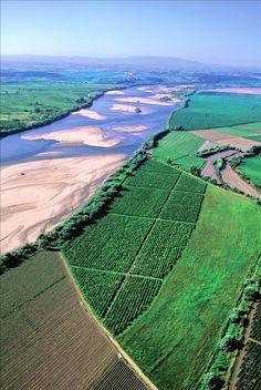 Rio Tejo e Lezíria do Tejo (Portugal).