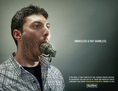 Anti-chew online ad  Photography by Mauricio Candela