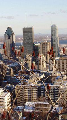 Skyscraper, Montreal, Quebec, Canada, iPhone,