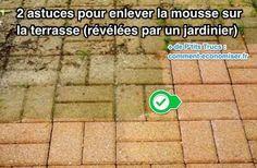 2+Astuces+Pour+Enlever+la+Mousse+sur+la+Terrasse+(Révélées+Par+un+Jardinier).