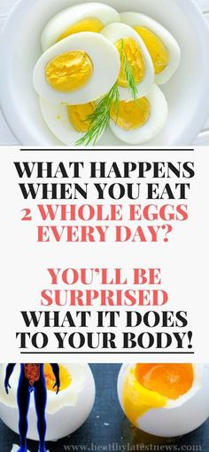 WHAT HAPPENS WHEN YOU EAT 2 WHOLE EGGS EVERY DAY? YOU'LL BE SURPRISED WHAT IT DOES TO YOUR BODY!