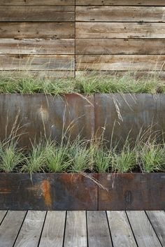 This Modern House Uses Stepped Weathering Steel Planters To Mediate Between The Boardwalk Level And The Ground Level, Which Is Elevated Above The Floodplain. Ipe Decking, Weathering Steel, Modern Planters, Rustic Planters, Succulent Planters, Flower Planters, Modern Architects, Wood Stairs, Waterfront Homes