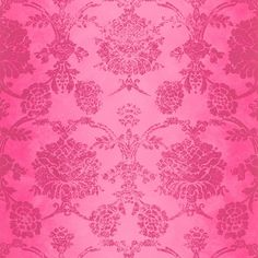 Designers Guild Sukumala Wallpaper - Magenta (130 CAD) ❤ liked on Polyvore featuring home, home decor, wallpaper, backgrounds, pink, pink home decor, pink damask wallpaper, pattern wallpaper, damask wallpaper and pink pattern wallpaper