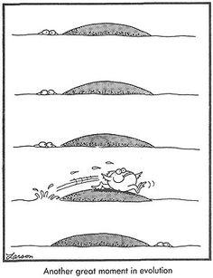 """The Far Side"" by Gary Larson. Far Side Cartoons, Far Side Comics, Funny Cartoons, Physics Humor, Engineering Humor, Cartoon Network Adventure Time, Adventure Time Anime, The Far Side Gallery, Laughter The Best Medicine"