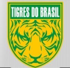 Football Logo Design, Logo Vintage, Sports Logos, Soccer, Tigers, Cards, Xmas