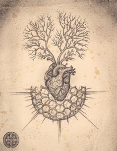 Soul of Cardiology - Heart Interpretations