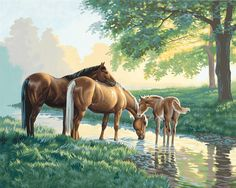 Horses By A Stream Paint by Number Kit by Paintworks Dimensions