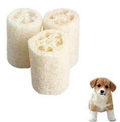 Fashionclubs Puppy Dog Cat Natural Loofah Chewing Toys Teeth Cleanning Play Toys Pack of 3 * Visit the image link more details. (This is an affiliate link and I receive a commission for the sales) Dog Chew Toys, Cat Toys, Natural Loofah, Corgi Pembroke, How To Make Rope, First Tooth, Medium Dogs, Teeth Cleaning, Small Gifts