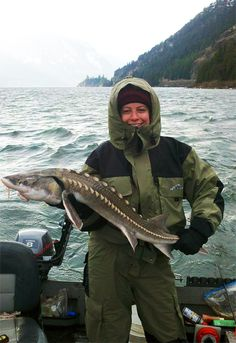 Keeper sturgeon caught in the Bonneville pool of the Columbia River, WA. Awesome catch, but she sure looks cooooolld!!
