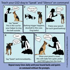 German Shepherd barking can be a nuisance or a life-saver depending on the situation. Teach your GSD to bark only for protection by following these tips and step-by-step techniques.