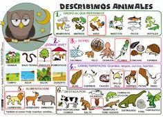 taquiamila: Describir animales