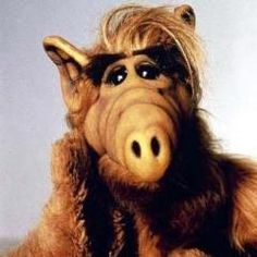 fondos Schauspieler Michu Meszaros: Alf i - Don Knotts, Alf Tv Series, Mejores Series Tv, Alien Life Forms, 80 Tv Shows, Favorite Tv Shows, My Favorite Things, Spiegel Online, Cartoon Tv