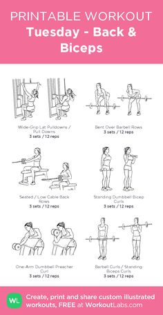 Tuesday - Back & Biceps – illustrated exercise plan created at WorkoutLabs.com • Click for a printable PDF and to build your own #customworkout