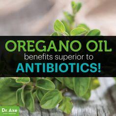Oregano Oil Health Benefits better than Antibiotics Title
