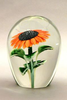 Sunflower- Orient & Flume Art Glass Pisa, Caithness Glass, Sunflower Art, Marble Art, Venetian Glass, Glass Marbles, Glass Paperweights, Glass Ball, Glass Design