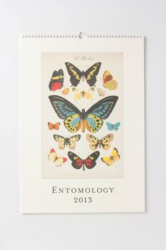 Entomology Wall Calendar. I love butterflies & cool bugs. I bought this and it looks fabulous on my wall.