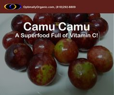Boost your immune system with Camu Camu! #healthyliving #healthyeating