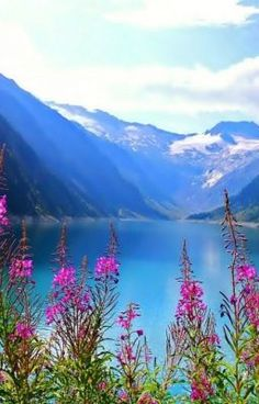 Good Morning Images, Wattpad, Mountains, Nature, Travel, Gud Morning Images, Naturaleza, Viajes, Good Morning Picture