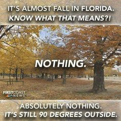 Fall is around the corner and what does that mean in Florida? Fall what fall? Florida Funny, Florida Humor, Florida Weather, Local Events, Sunshine State, Around The Corner, 16 Year Old, Meant To Be, Funny Stuff