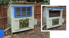 Should do this on my chicken coop/duck house.