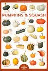 Winter Squash Guide   Co+op, welcome to the table Pumpkin Soup, Pumpkin Carving, Winter Squash Varieties, Sweet Dumplings, Feeding A Crowd, Baked Goods, The Cure, Fruit, Table