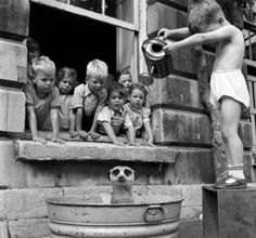 Meerkat Bath | Old Photograph | Children | School | Black & White | Bath Time | Watering Can | Trouble Makers | Animal | Fun | Vintage | Photography