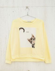BSK Kitty/Puppy sweatshirt. Discover this and many more items in Bershka with new products every week