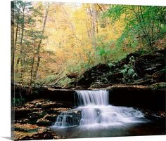 Pennsylvania, Benton, Ricketts Glen State Park, Waterfalls at Glen Natural Area
