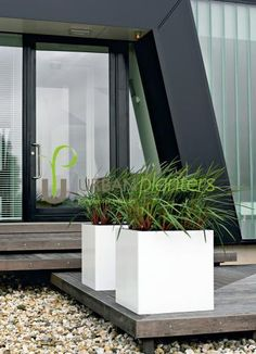 interior landscaping office. Interior Plant Landscaping By Www.interiorplantscapesllc.com With Offices In Greenville, Charlotte, Columbia, \u0026 Charleston. Office