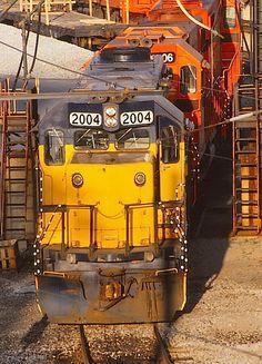 Chicago South Shore & South Bend 2004, EMD GP38-2 #796333-5, built 1/81. Train Engines, Train Journey, South Bend, Steam Locomotive, Model Trains, Buses, Nostalgia, Chicago, Building