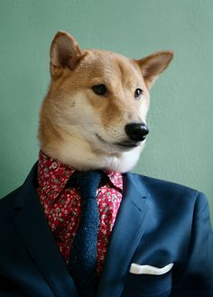 Your Spring Fling: Floral Prints Floral Print Shirt: Uniqlo Shiba Inu, Robert Downey Jr, Floral Print Shirt, Floral Prints, Uniqlo, Menswear Dog, Dog Presents, Japanese Dogs, Guys Be Like