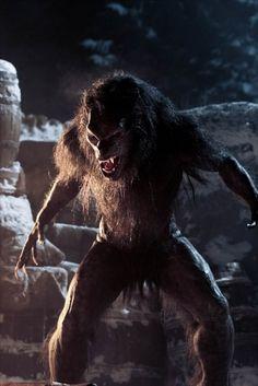 Werewolf Vs Vampire, Werewolf Art, Arte Horror, Horror Art, Fantasy Creatures, Mythical Creatures, Underworld Movies, Apocalypse, Fantasy Characters