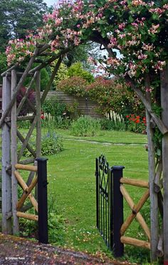 love the arbor and gate