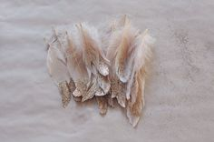DIY glitter feathers -- for prettying up gift wrap or a Christmas tree