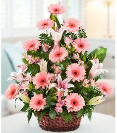 Basket arrangement of lilies and gerberas Rosen Arrangements, Basket Flower Arrangements, Altar Flowers, Beautiful Flower Arrangements, Silk Flowers, Spring Flowers, Floral Arrangements, Beautiful Flowers, Ikebana