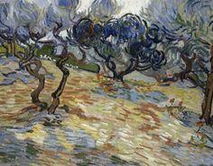 Vincent Van Gogh, Canvas Poster, Canvas Art, Canvas Prints, Van Gogh Olive Trees, Painting Prints, Art Prints, Flowering Trees, Portrait