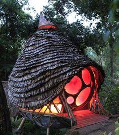 Haus Baum Beleuchtung originelle Idee Architektur