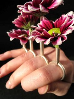 a vase for your gerbera daisy, by Francesca Smith of London