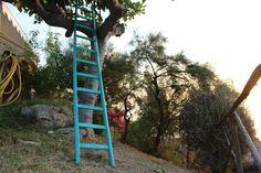 #scale nella natura abruzzese... #abruzzo