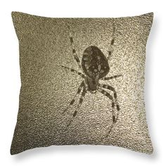 Golden Cross Spider Throw Pillow by Sverre Andreas Fekjan. Our throw pillows… Pillow Sale, Poplin Fabric, Apartment Living, Spider, I Am Awesome, How To Make Money, Throw Pillows, Halloween, Decoration